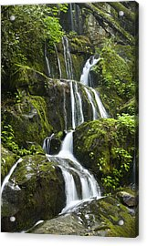 Place Of A Thousand Drips Acrylic Print by Andrew Soundarajan