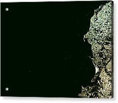 Planet X Acrylic Print by Robert Cunningham