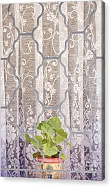 Planter In Window Acrylic Print by Jeremy Woodhouse