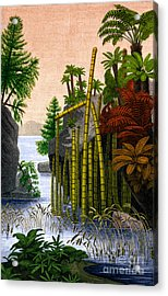 Plants Of The Triassic Period Acrylic Print by Science Source
