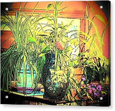 Acrylic Print featuring the mixed media Plants by YoMamaBird Rhonda