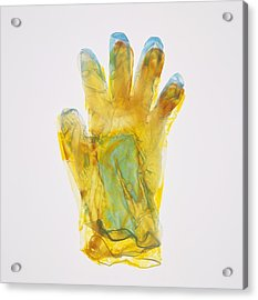 Plastic Glove Acrylic Print by Kevin Curtis