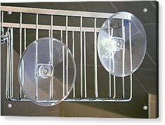 Plastic Suction Cups Acrylic Print by Sheila Terry