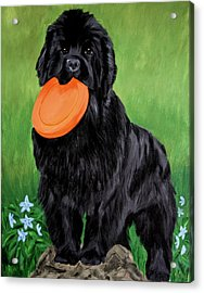 Acrylic Print featuring the painting Play With Me by Sharon Nummer