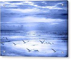 Playa De Traba Acrylic Print by Alfonso Garcia