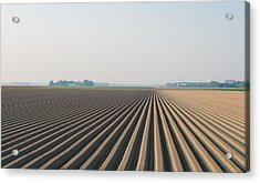 Acrylic Print featuring the photograph Plowed Field by Hans Engbers