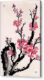 Acrylic Print featuring the painting Plum Blossoms Iv by Yolanda Koh