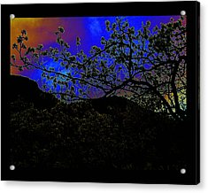 Acrylic Print featuring the photograph Plum Grove At Dusk by Susanne Still