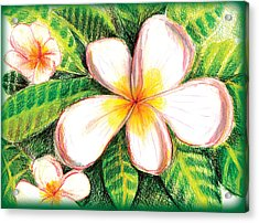 Plumeria With Foliage Acrylic Print