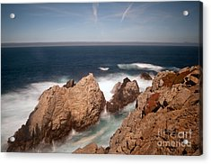 Point Lobos Number One Acrylic Print by Catherine Lau