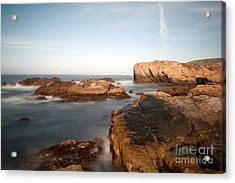 Point Lobos Number Three Acrylic Print by Catherine Lau