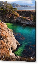 Point Lobos State Reserve California Acrylic Print by Utah Images