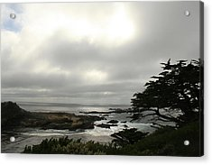 Point Lobos View Acrylic Print by Suzanne Lorenz