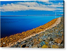 Point Of View Acrylic Print by Doug Long
