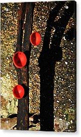 Poison Mushroom Acrylic Print by Vinod Nair