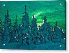 Polar Nights Acrylic Print by Steve K