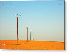 Poles In Field Acrylic Print by Klaus W. Saue