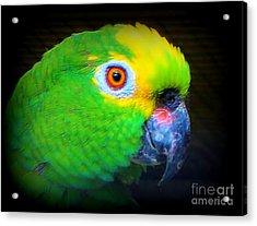 Polly Acrylic Print