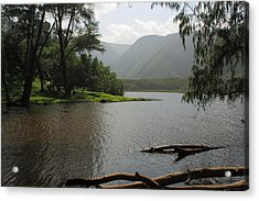 Acrylic Print featuring the photograph Pololu Valley Off Awini Trail by Scott Rackers