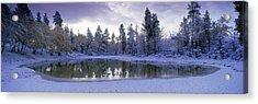 Pond And Fresh Snowfall, Near 70 Mile Acrylic Print by David Nunuk