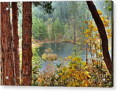 Pond At Golden Or. Acrylic Print by Jim Adams