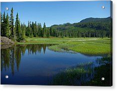 Pond Reflection Acrylic Print