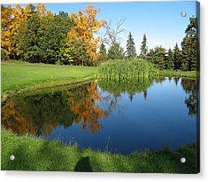 Pond Reflections Acrylic Print by Leontine Vandermeer