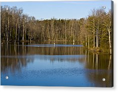 Pond Relflections Acrylic Print by Terry Thomas