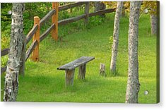Pondering Bench Acrylic Print by Michael Carrothers
