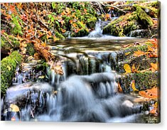 Pooling Resources Acrylic Print by JC Findley