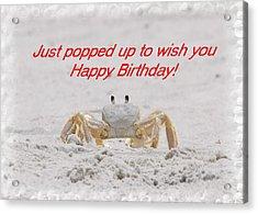 Popped In To Wish You Happy Birthday Acrylic Print by Judy Hall-Folde