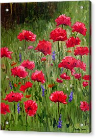Poppies In A Meadow I Acrylic Print