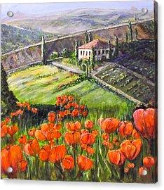 Poppies In Tuscany Acrylic Print by Maureen Pisano