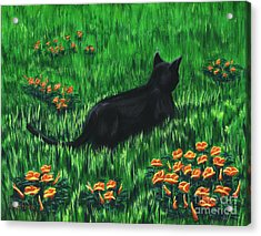 Poppy Cat Acrylic Print