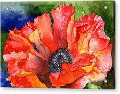 Poppy Acrylic Print by Eunice Olson
