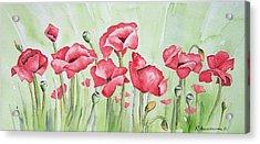 Poppy Field Acrylic Print by Regina Ammerman