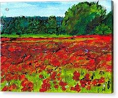 Poppy Fields Tuscany Acrylic Print by Jackie Sherwood