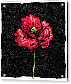 Poppy Flower, Woodcut Acrylic Print