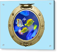 Porthole Of Fish Acrylic Print