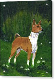 Acrylic Print featuring the painting Portrait Of A Basenji by Sharon Nummer