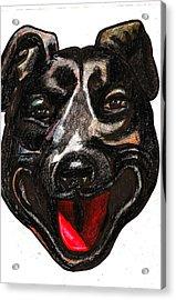Portrait Of A Pooch Acrylic Print by Al Goldfarb