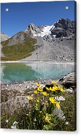 Postcard From Alpes Acrylic Print by Mircea Costina Photography