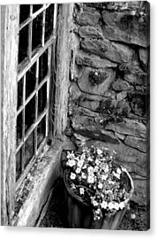 Pots And Panes Acrylic Print