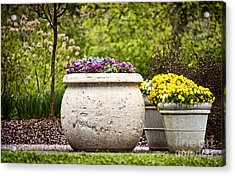 Acrylic Print featuring the photograph Pots Of Pansies by Cheryl Davis