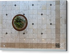 Potted Plant In Foyer Floor From Above Acrylic Print by Will & Deni McIntyre