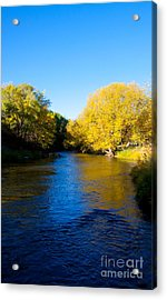 Poudre River Acrylic Print by Dana Kern