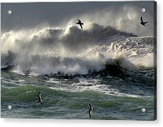 Acrylic Print featuring the photograph Power by Barbara Walsh