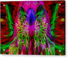 Power Hawk 2 Acrylic Print by Colleen Cannon