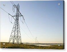 Powerlines Jepson Prairie Preserve Acrylic Print by Sebastian Kennerknecht