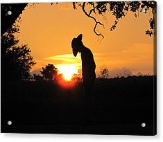 Praying Acrylic Print by Barry Moore